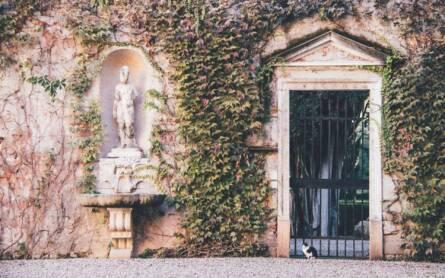 Eine Katze sitzt vor einem alten Eisentor am Eingang zum Giardino Giusti in Verona.