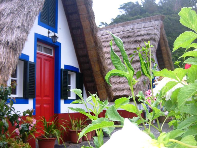 Madeira Tauchen, Surfen: Ein Haus mit einer roten Türe und Pflanzen davor.