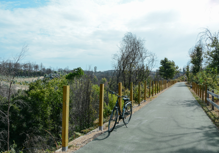 Ein Weg auf dem ein Fahrrad steht.