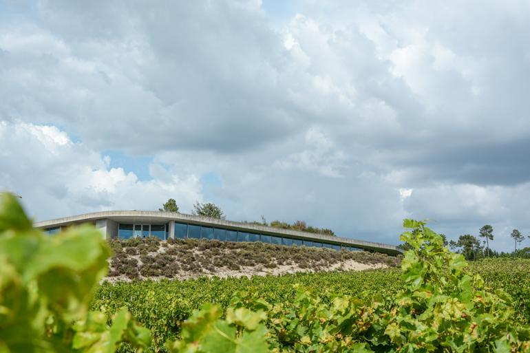 Ein modernes Haus das auf einem Feld steht.