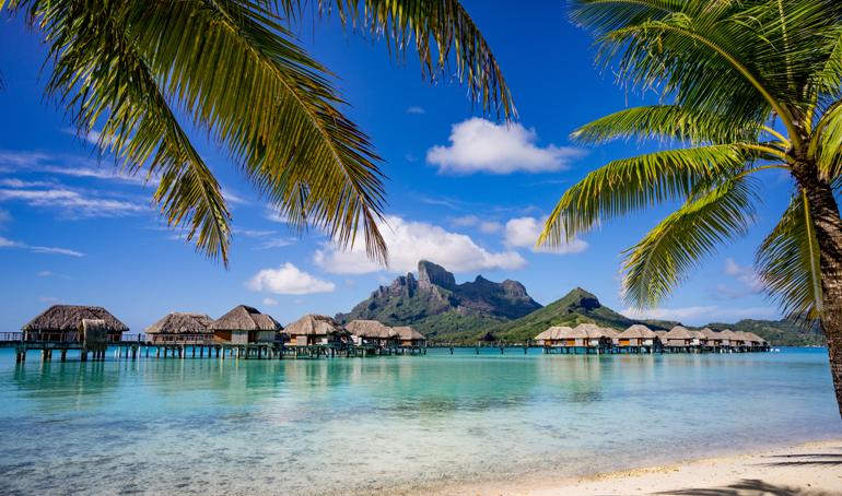 Strand von Bora Bora umrahmt mit Palmen