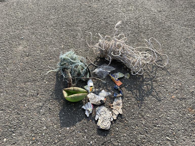 Müll der am Boden liegt.