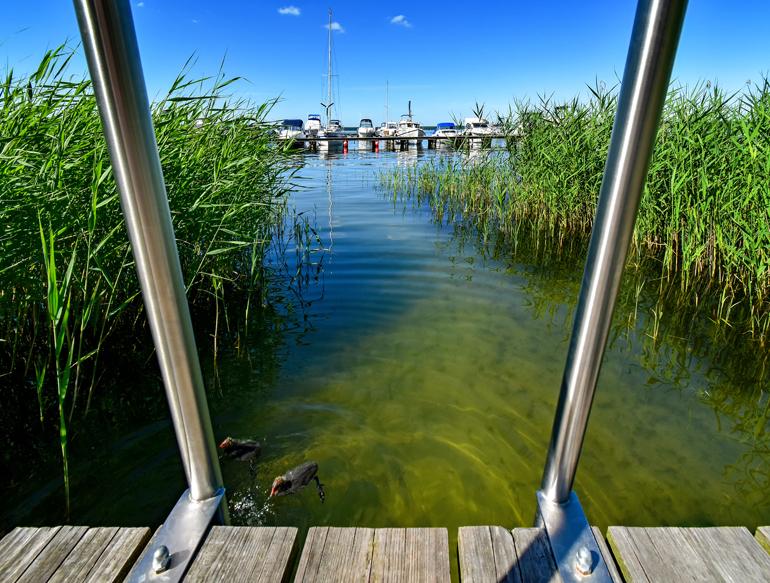 Ein Steg an einem See mit Booten im Hintergrund.