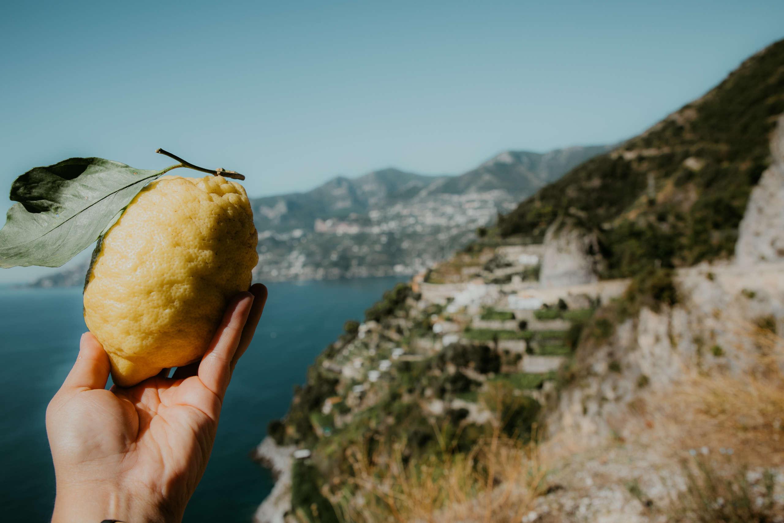 Eine Zitrone die in der Hand gehalten wird.