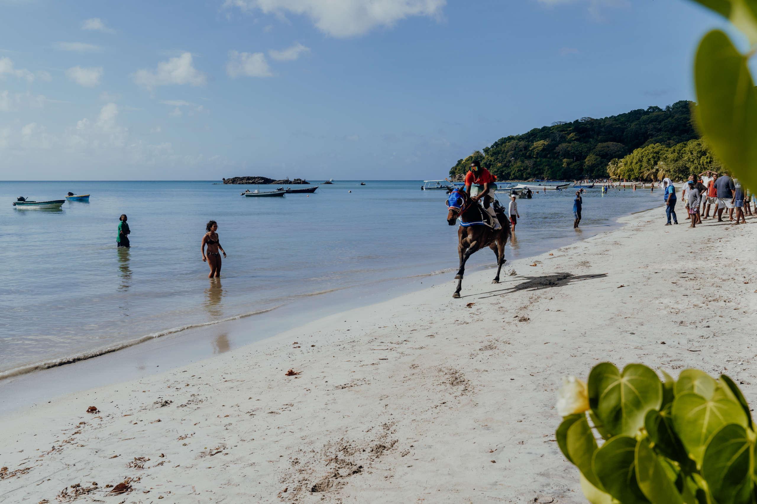Ein Pferd das am Strand läuft.