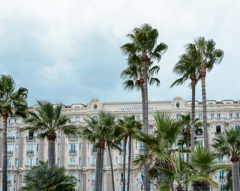 Palmen vor einem Gebäude.