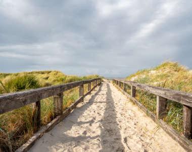 Eine umzäunte Sanddüne auf der Ostseeinsel Fehmarn führt zum Strand