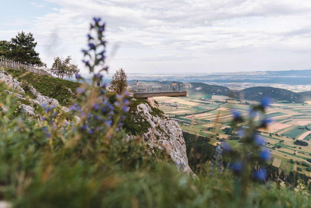 Die Plattform des Skywalks an der Hohen Wand ist ein lohnendes Ausflugsziel von Wien aus, sie ragt über eine Felswand hinaus und eröffnet den Ausblick auf die weite Landschaft.