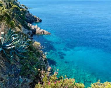 Die Steilküste der Adria eröffnet beeindrucke Ausblicke auf die grüne Vegetation, u.a. eine große Argavenpflanze und das darunterliegende glasklare Wasser.