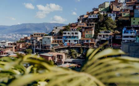 Durch Palmenblätter hindurch fällt der Ausblick auf die Comuna13, einen einst sehr berüchtigten Stadtteil von Medellin in Kolumbien.
