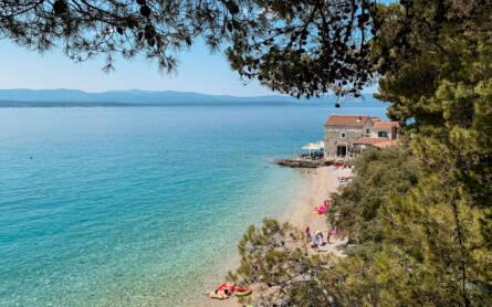 Durch ein paar Baumzweige hindurch fällt der Blick auf eine Bucht mit Kiesstrand und glasklarem, türkisfarbenem Wasser in Kroatien.