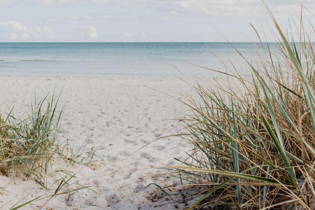 Weißer Sandstrand und grünes Gewächs liegen an der Bucht von Falsterbro im schwedischen Skane, in der Ferne befindet sich türkisklares Meerwasser