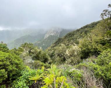 Der Ausblick vom Mirador de El Bailadero auf La Gomera.