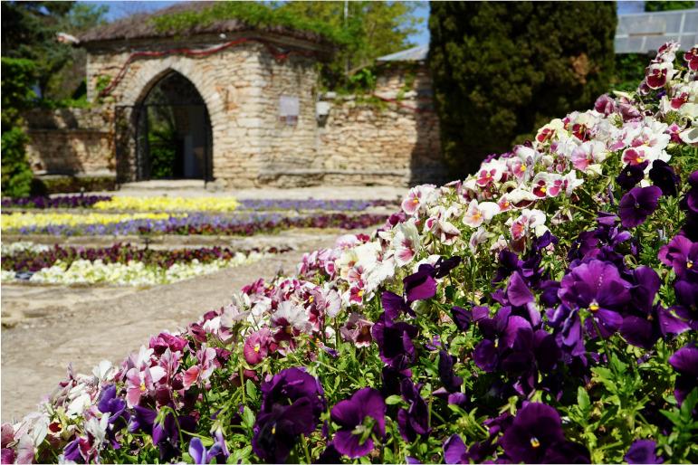 Ein Blumenbeet des Schlossparks Baltschik in Bulgarien im Vordergrund, im Hintergrund ein Tor und weitere Blumen.