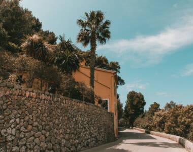 Eine kurvige Straße umgeben von Palmen entlang einer Mauer führt in das Dorf Deià auf Mallorca.