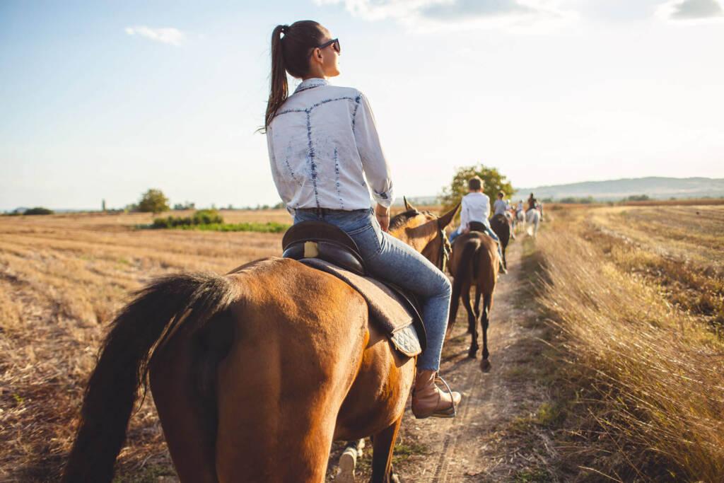 Eine Gruppe reitet bei Sonnenschein hintereinander auf Pferden einen Feldweg entlang