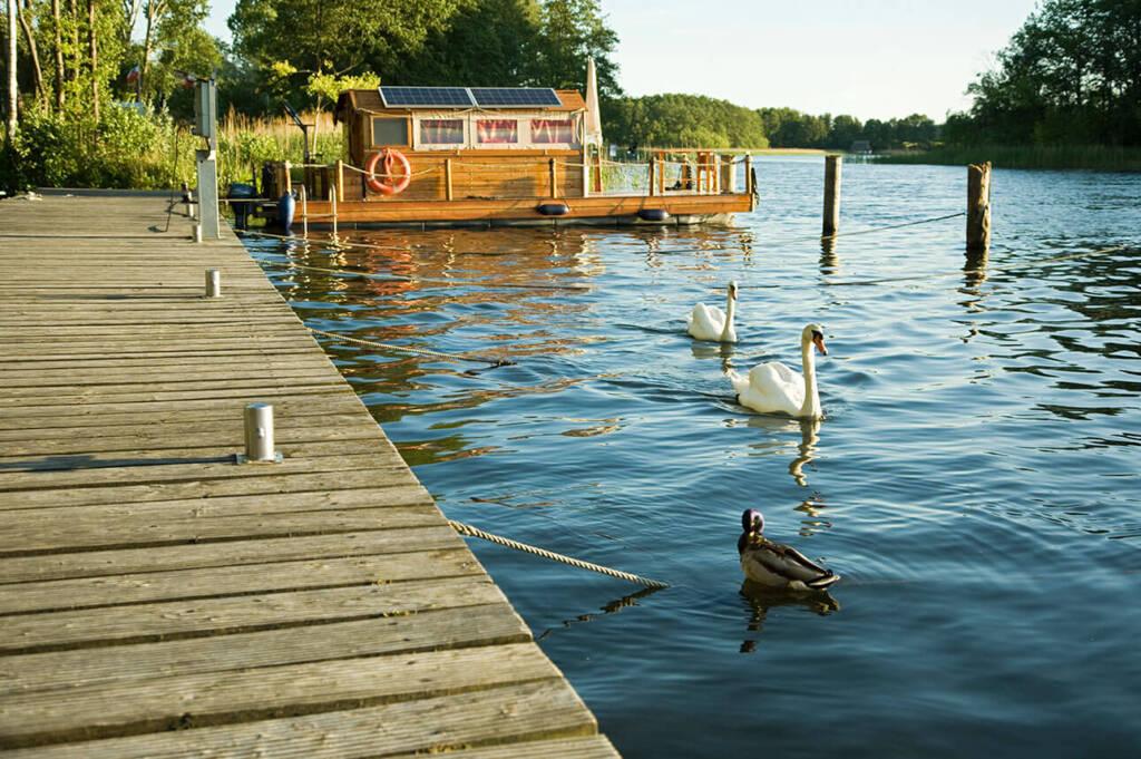 Ein idyllischer Sommer Nachmittag am Steg mit Boot im Hintergrund, auf dem See schwimmen einige Schwäne und Enten