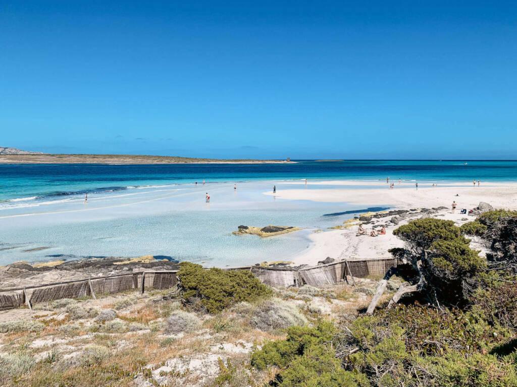 Von den Dünen kann man den Strand hinunter über das blau strahlende Meer der La Pelosa Lagune auf Sardinien blicken.