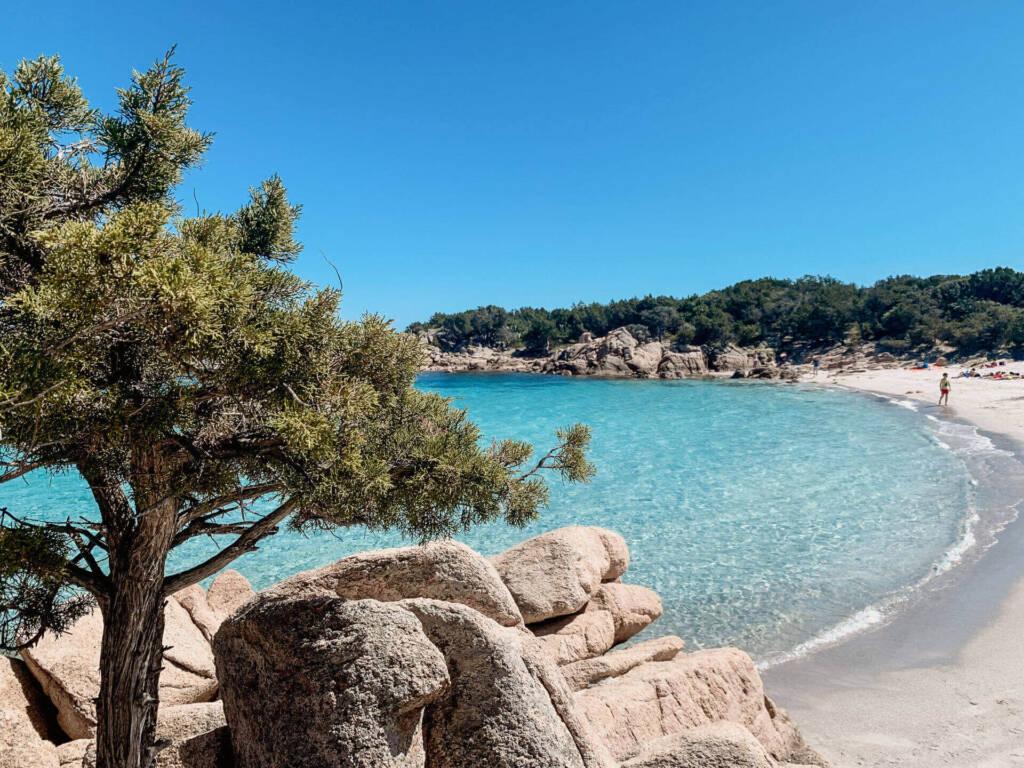 Bäume und weißer Sand umgeben das Meer der Cala Capriccioli im Norden von Sardinien.